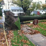 Hurricane Sandy Destruction 3